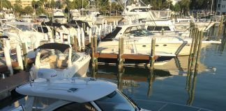 Yacht Window Tint